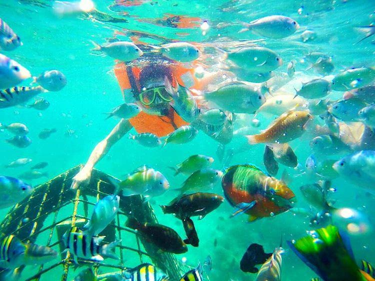 Gili Nanggu Lombok, Informasi Lokasi dan Rute Untuk Anda