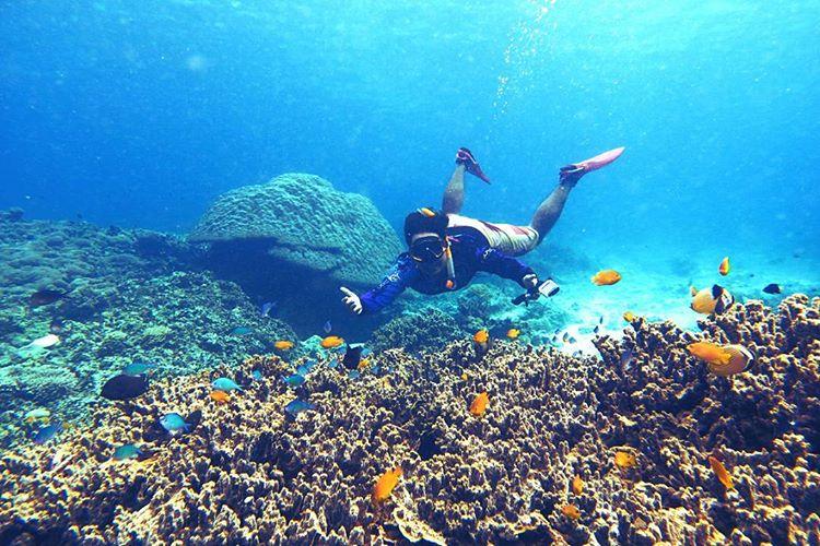 7 Langkah Tips Snorkeling Asyik di Pulau Lombok