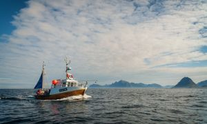 Ilustrasi kapal untuk penyeberangan antar pulau, sumber unsplash