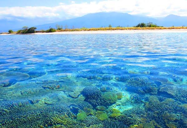 Wisata Gili Bidara (Spot Snorkeling atau Diving nan Indah)