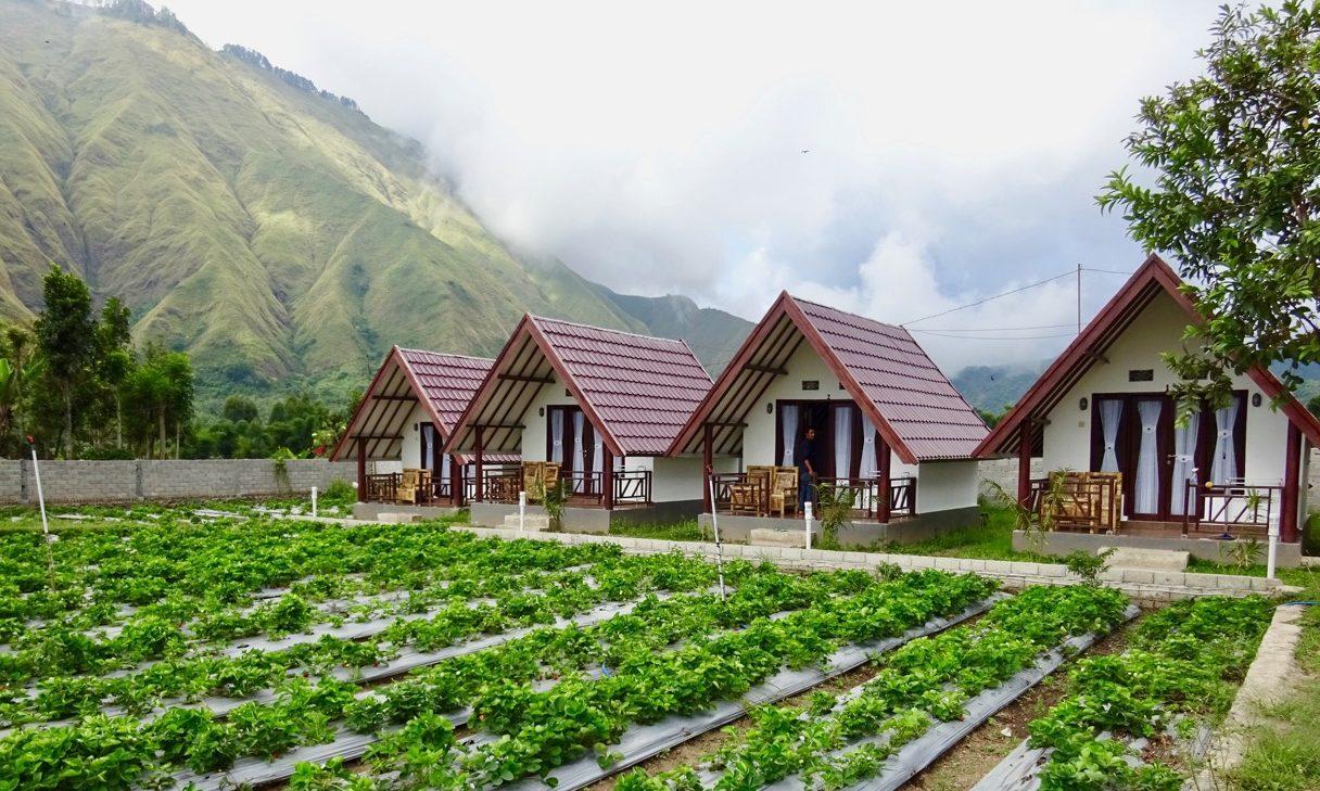 5 Penginapan di Pulau Lombok yang Menawan