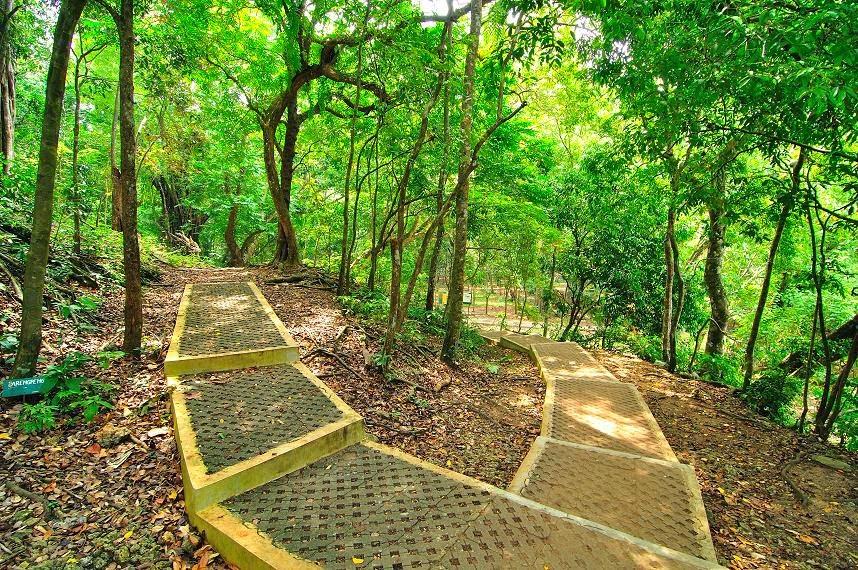 Hutan Lindung Sesaot