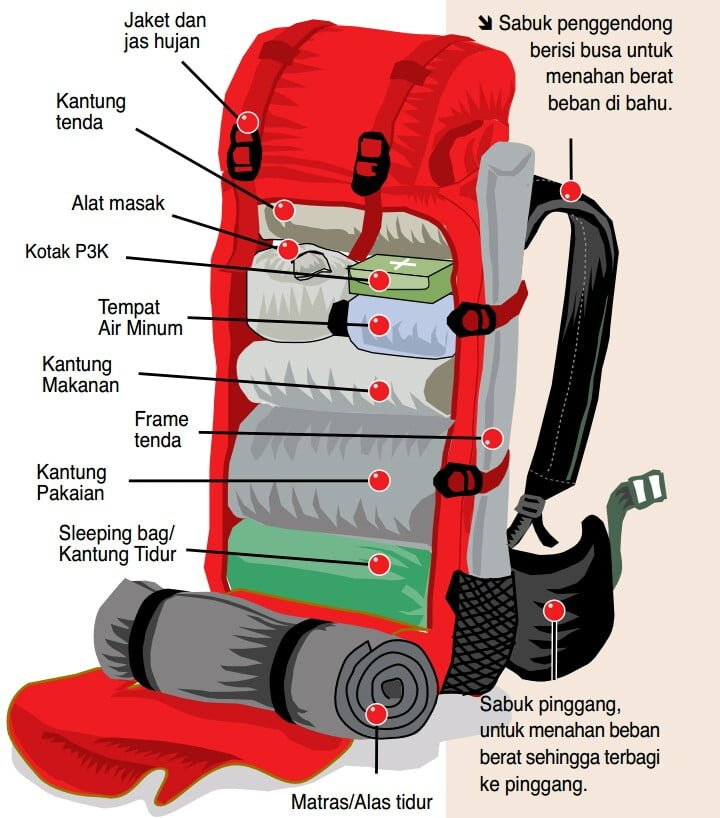 Cara Packing Carrier