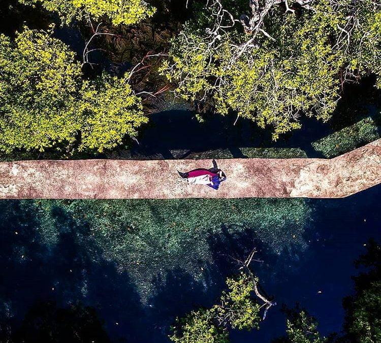 Gili Sulat Lombok, Area Hutan Mangrove Yang Indah