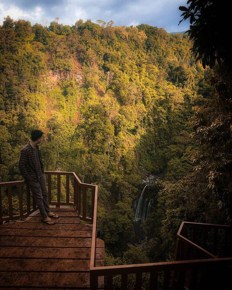 Wisata Alam Kebun Kopi Senaru, sumber ig kevin.fa_